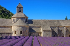 abbaye-notre-dame-de-senanquelavendel-1